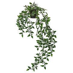 IKEA FEJKA ( 403.495.31) Штучна рослина в горщику 9 см