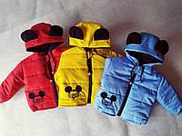 Детская демисезонная куртка 74рост Красный (68,74,80,86,92,98) Моя мышка