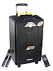 Колонка аккумуляторная Temeisheng QX-1214 USB, Bluetooth, 2 микрофона, фото 4