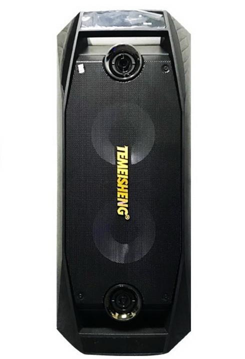 Аккумуляторная колонка Temeisheng TMS-802 караоке комбо усилитель  с двумя микрофонами