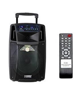 Колонка аккумуляторная Temeisheng SL12-01 USB, Bluetooth, 2 микрофона