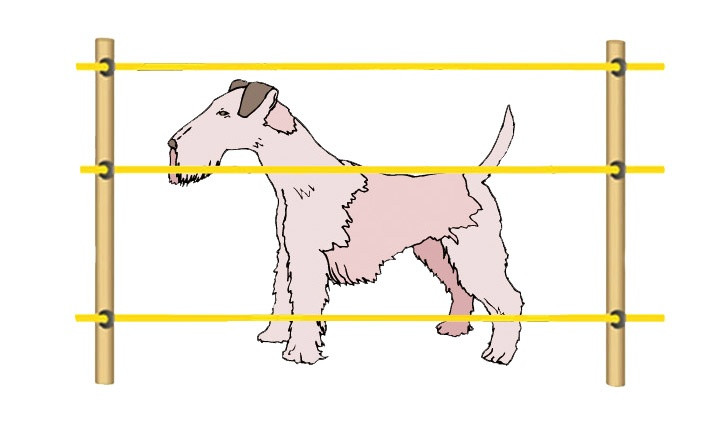 Электропастух для собак и котов (комплект на 125 м.)
