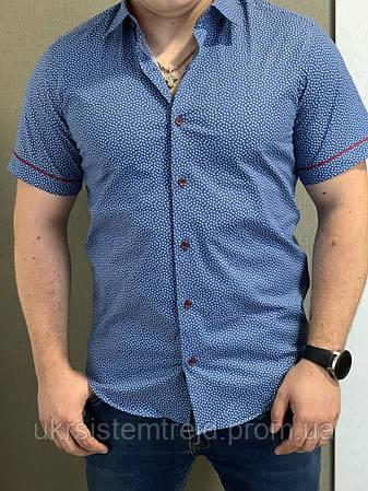 Тенниска мужская Passero синяя