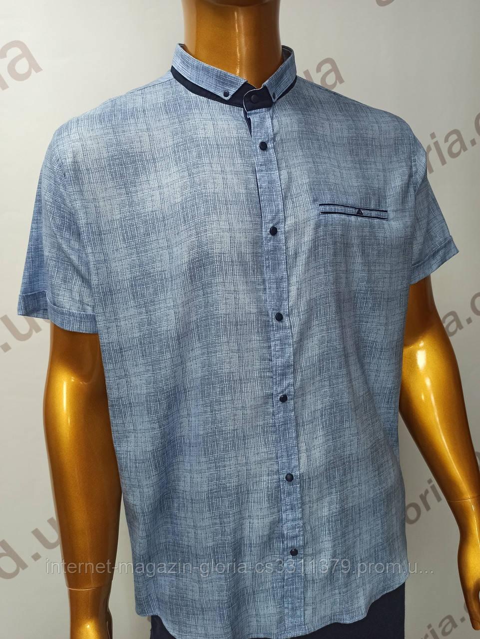 Мужская рубашка Amato. AG  29744(se). Батал. Размеры: 2XL,3XL,4XL,5XL.