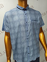 Мужская рубашка Amato. AG  29744(se). Батал. Размеры: 2XL,3XL,4XL,5XL., фото 1