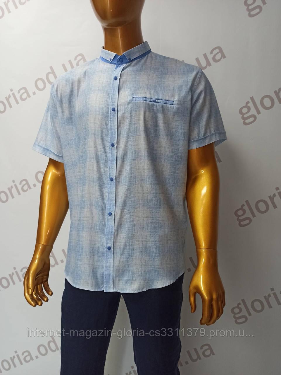 Мужская рубашка Amato. AG  29744(sg). Батал. Размеры: 2XL,3XL,4XL,5XL.