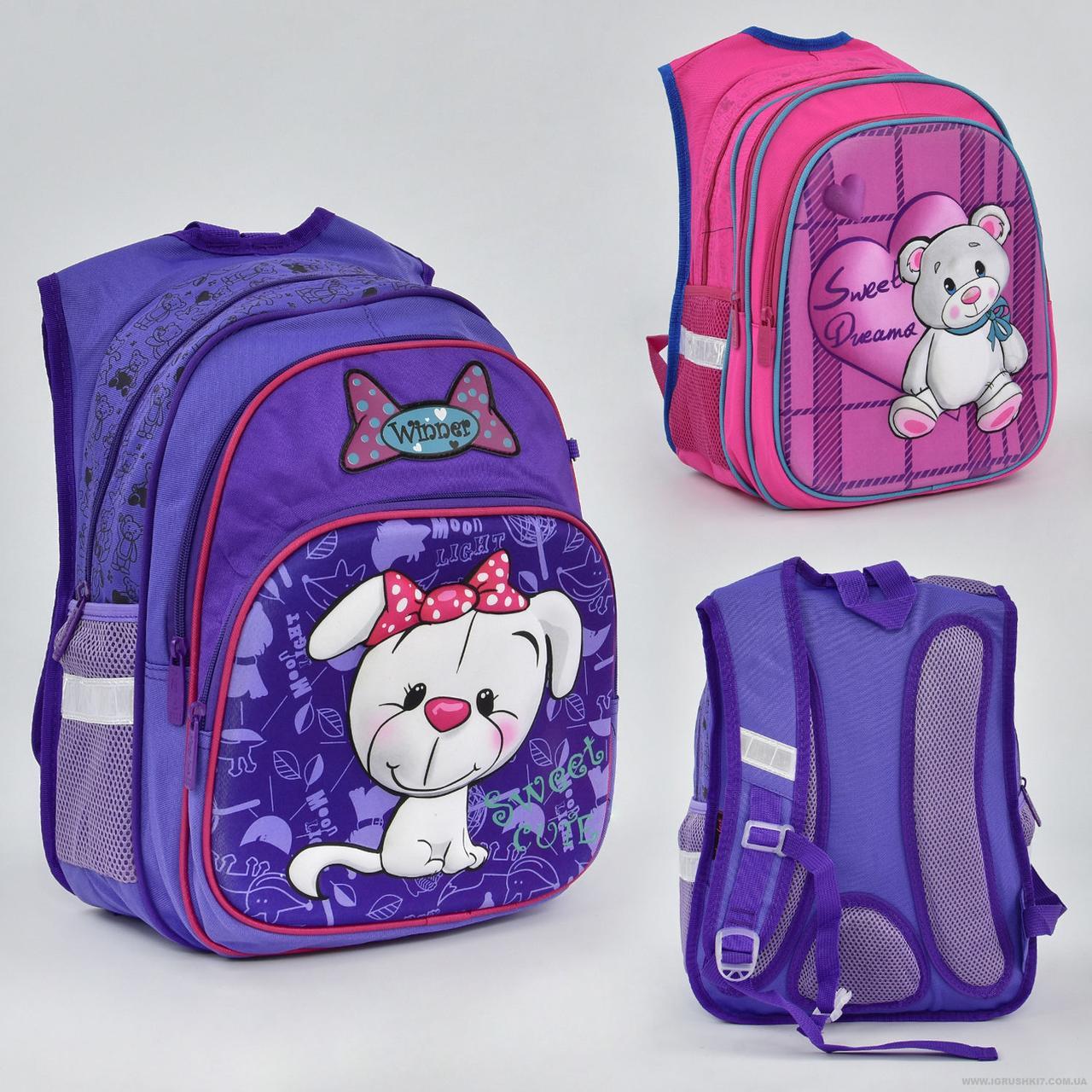 Рюкзак школьный 2 вида, 2 отделения, 3 кармана, ортопедическая спинка