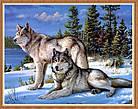 Алмазная вышивка волки 30х40 см, полная выкладка, фото 2