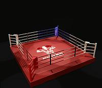 Боксерский ринг 6Х6 метра на помосте (0,35 м) тренировочный.