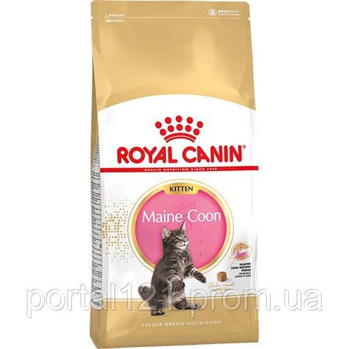 Сухой корм Royal Canin Maine Coon Kitten для котят мейн-кунов до 15 месяцев, 4 кг