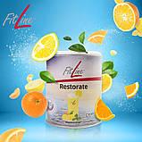 Фитлайн Restorate   Ресторейт,  витаминно- минеральный комплекс ,помогает избавится от лишнего веса, Германия, фото 5