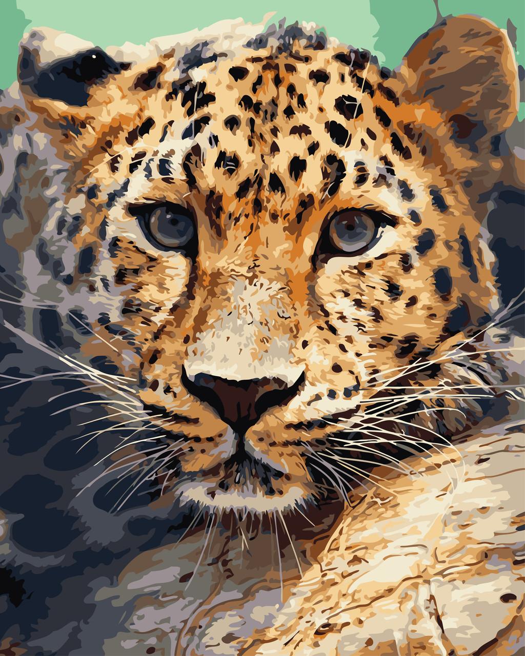 """Картина по номерам """"Леопард"""" 40*50 см в коробке, ArtStory + акриловый лак"""