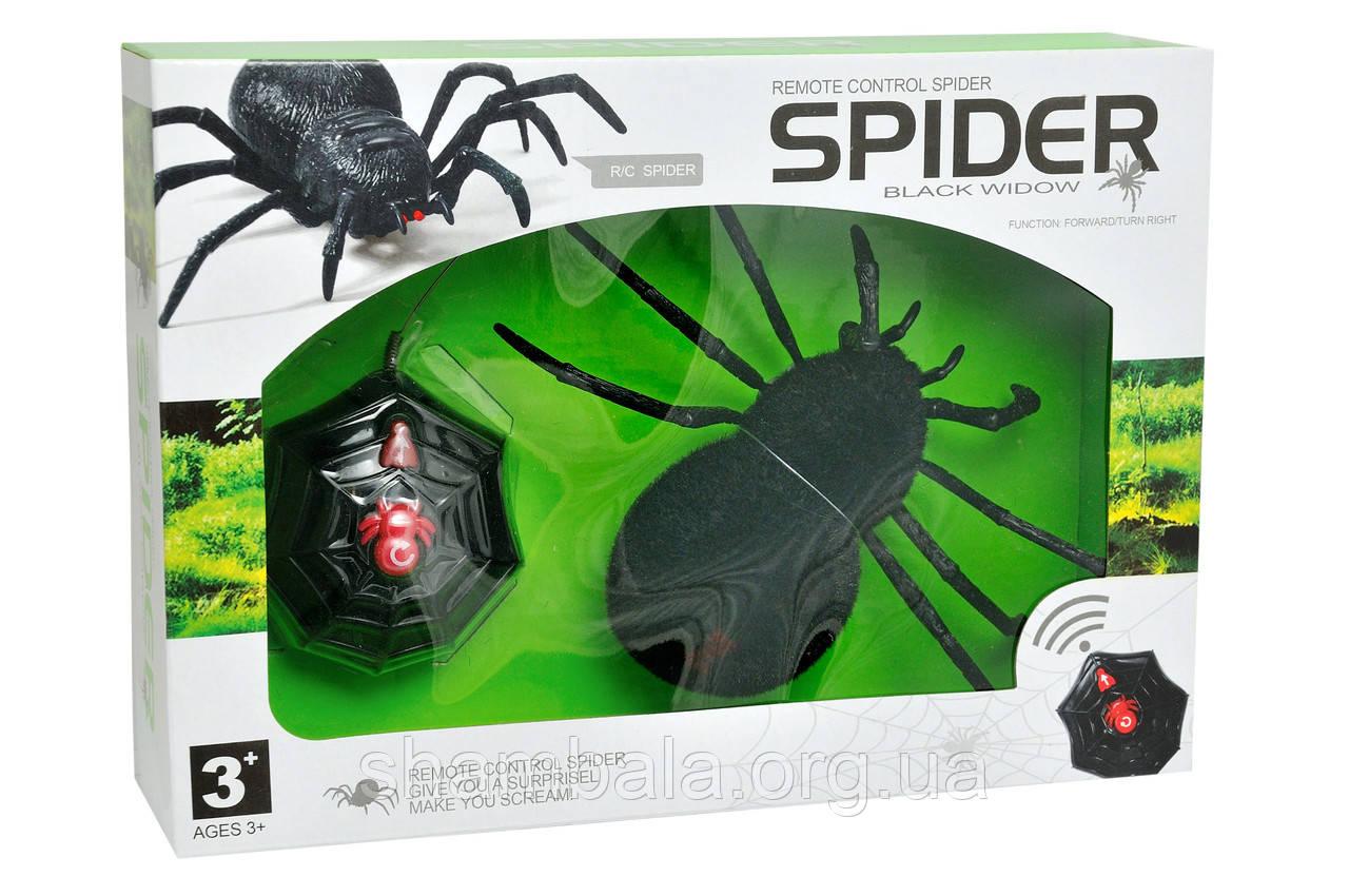 "Игрушка на радиоуправлении ""Black wodow spider"" remote control spider (065199)"