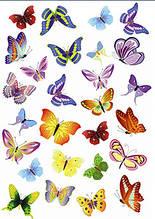 Вафельная картинка Бабочки 17