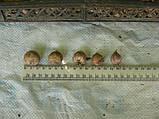 Озимый чеснок для посадки сорт Лидер-однозубка(элита) 500гр, фото 7