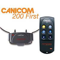 Numaxes Canicom 200 First электронный ошейник для дрессировки собак