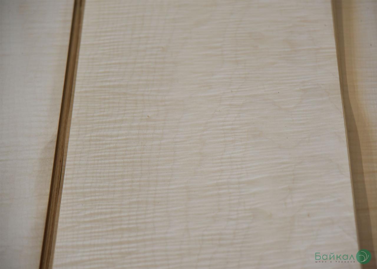Шпон Клен Сикомора (натуральный) 0,55 мм АВ сорт - 2,60 м +/10 см+
