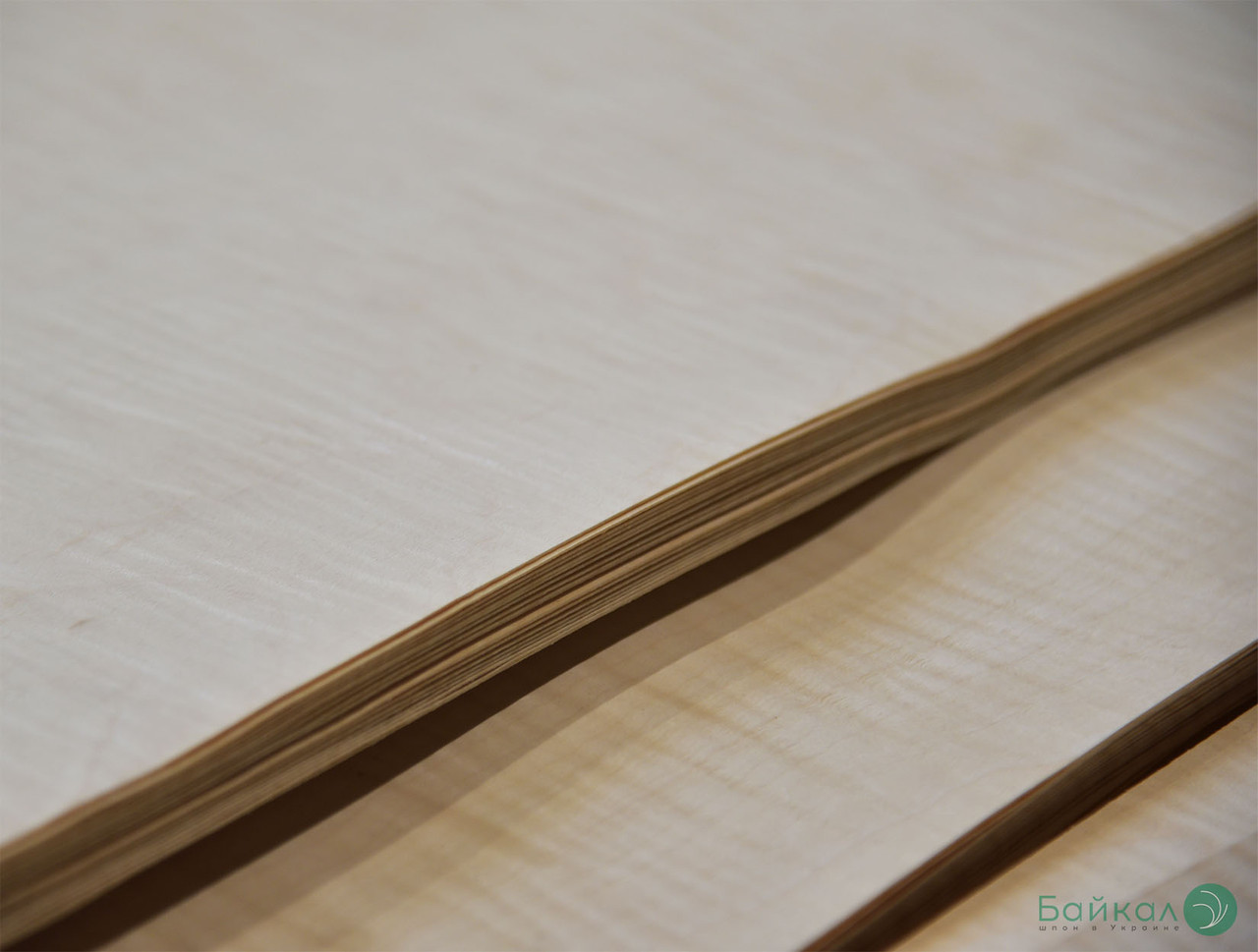 Шпон Клён Сикомора (натуральный) 0,55 мм АВ сорт - 2,10 м+/10 см+