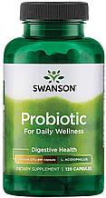 Біфідо лактобактерії, swanson Probiotic for Daily Wellness 120 capsules