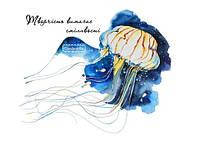 """Открытка с медузой """"Творчество требует смелости!"""""""