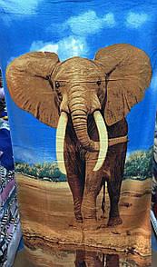 """Пляжний рушник з принтом """"Слон"""" розмір 140х70 см"""
