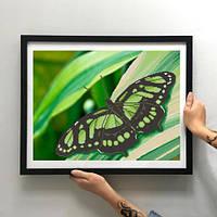 Картина Зеленая бабочка ММЖМ-004 [Материал: Габардин подклеенный флизелином]