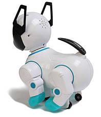 Интерактивная игрушка робот-собака Toys Smart Dancer - Интерактивные детские игрушки, фото 2