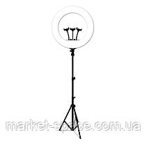 Кольцевая cветодиодная лампа со штативом LED Soft Ring Light RL-21 (диаметр 54 cм) с пультом ДУ, фото 2