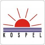 Электрические настенные котлы KOSPEL