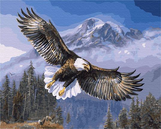 Юнный Орел, фото 2