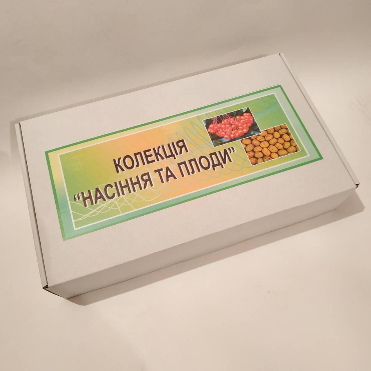 """Колекція """"Насіння і плоди 14 або 20 зразків"""