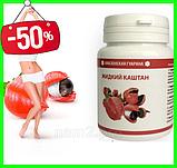 Жидкий Каштан - Средство для похудения (день), фото 3
