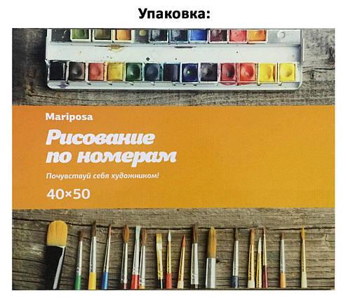 MR-Q848 Раскраска по номерам Васильки в стеклянной вазе худ. Вьюгова Римма, фото 2