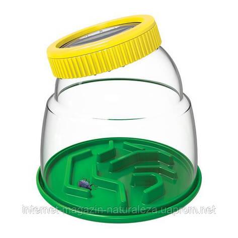Набор натуралиста Edu-Toys Контейнер для насекомых с лупой 5x (JS010), фото 2