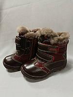 Бордовые зимние ботинки для девочки 21, 26 размер, фото 1