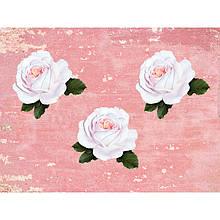 "Наклейка  ""Чайна троянда"""