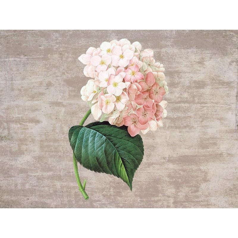 Наклейка Рожева гортензія  Вінілова плівка  Німеччина