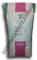 Семена свеклы «Урсус Поли» 20 кг (мешок)