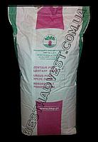 Семена свеклы «Центаур Поли» 20 кг (мешок)