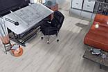 Ламинат Kronopol Sigma Вяз Касандра 5375, фото 2