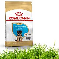 Корм для собак Royal Canin German Shepherd Puppy 12 кг