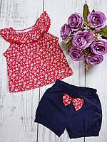 Красно синий легкий летний костюм для девочки 68(3-6мес.)(р) лето 00250