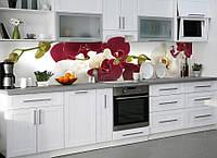 Виниловая наклейка кухонный фартук-скинали, самоклейка для кухни ReD Орхидеи бордовые и белые макро 60х250 см