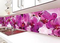Виниловая наклейка кухонный фартук-скинали, самоклейка для кухни ReD Пышные розовые орхидеи 60х250 см