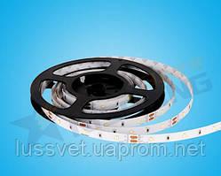 Светодиодная лента 12V 8,6W 3000K IP33 Rishang