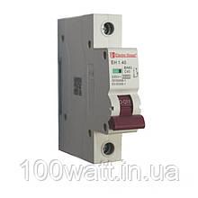 Автоматичний вимикач 1  полюс 40 A