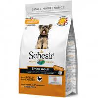 Schesir Small Dog Adult Chicken ШЕЗИР ДОРОСЛИЙ МАЛИХ КУРКА монопротеин. корм для собак малих порід 0,8 кг