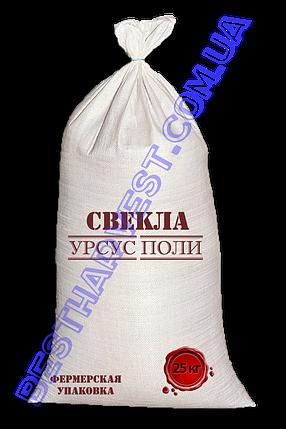 Семена свеклы «Урсус Поли» 25 кг (мешок), фото 2