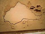 Изготовим различный деревянный резной настенный декор, фото 2