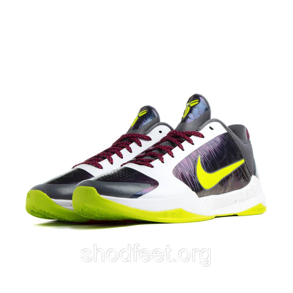 """Мужские кроссовки Nike Zoom Kobe V Protro """"Chaos"""""""